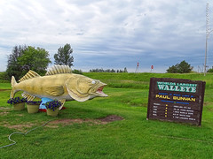 World's Largest Walleye, 17 July 2019 (photography.by.ROEVER) Tags: minnesota 2019 july july2019 vacation roadtrip 2019vacation 2019roadtrip minnesota2019roadtrip minnesota2019vacation chisagocounty rushcity walleye worldslargestwalleye roadsideattraction i35 usa