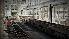 train cleaning is complete (Sat Sue) Tags: olympus micro four thirds 43 penf japan fukuoka takeshita station railway railroad