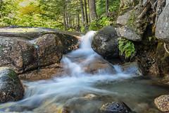 Flume Brook Falls Explored 10182019 (EHPett) Tags: waterfall longexposure newhampshire newengland rocks stream flumegorge whitemountains scenic fern