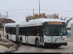 Winnipeg Transit #381 (vb5215's Transportation Gallery) Tags: winnipeg transit 2019 new flyer xd60 xcelsior