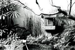 【園林】 #園林 #Garden (L.YL) Tags: garden 園林