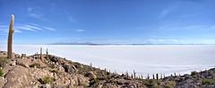 The immensity of the Uyuni Salar (Chemose) Tags: sony ilce7m2 alpha7ii mai may bolivie bolivia salar uyuni montagne mountain lake lac sel salt desert incahuas cactus