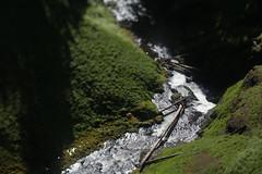 Salt Creek Falls (Tony Pulokas) Tags: saltcreekfalls saltcreek creek stream waterfall tilt blur bokeh oregon rock moss spring basalt