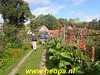 """2019-10-16        Driel  24 km  (72) • <a style=""""font-size:0.8em;"""" href=""""http://www.flickr.com/photos/118469228@N03/48912605841/"""" target=""""_blank"""">View on Flickr</a>"""