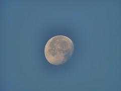 Moon. Morning 17.10.2019 (M!FODY) Tags: russia moon moscowregion serpukhov sky fullmoon photo photoart views луна россия небо полнолуние