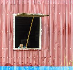 Ciao! (forastico) Tags: myanmar birmania forastico nikon d7100 finestra lagoinle bambino earthasia