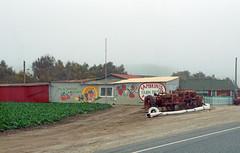 Roadside America (SomePhotosTakenByMe) Tags: farm gebäude building shop store geschäft laden ontheroad fambrinis usa america amerika unitedstates california kalifornien outdoor tractor traktor
