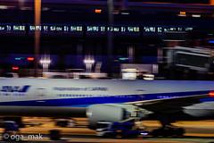 MAK-8068 (oga_mak) Tags: makogawauchi ogamak 東京都 日本 500mm eos canoneos eos1dxmarkii canon myeosphoto airport aircraft airplane aviation aviationphotography igairplaneclub hanedaairport hikoukiclub キヤノン 羽田空港 飛行機撮り隊 飛行機大好き 飛行機写真 飛行機のある風景 飛行機倶楽部 飛行機 写真好きな人と繋がりたい カメラ好きな人と繋がりたい モノレール monorail