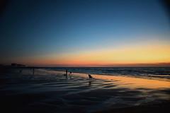 0330 Fishermen (leike49) Tags: sea beach water fish people silhouette sunset amateurphotography nikon d5300 fishermen
