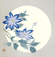 Clematis (Japanese Flower and Bird Art) Tags: flower clematis florida rununculaceae kojin kudo modern woodblock print japan japanese art readercollection
