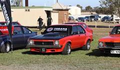 Holden LX Torana A9X (Runabout63) Tags: holden torana a9x mallala