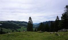 DSC02304 (Bergwandern Alpen) Tags: alpen alps bergwandern hiking holzegg hügellandschaft alptal kantonschwyz landscape hills