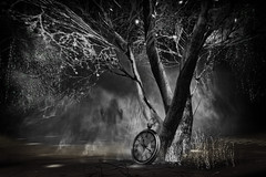 Give up ! Slow down ! (milena carbone) Tags: 3d art black blackandwhite blur fog bw watch chaos ghost collapse climatechange glow monochrome secondlife secondlifeart secondlifephotography slart slphoto slphotography tree trees virtual world