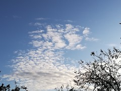 Great clouds today (daveandlyn1) Tags: