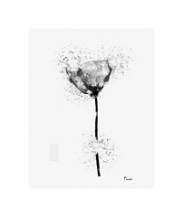 Flower (-Simulacrum-) Tags: flower art creative photoart editing blackwhite beautiful digitalart sketch painting