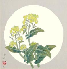 Rape (Japanese Flower and Bird Art) Tags: flower rape brassica napus brassicaceae kojin kudo modern woodblock print japan japanese art readercollection