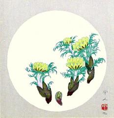 Pheasant's eye (Japanese Flower and Bird Art) Tags: flower pheasant's eye adonis amurensis ranunculaceae kojin kudo modern woodblock print japan japanese art readercollection