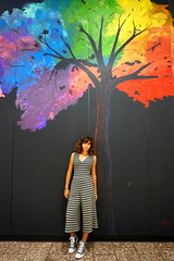 Can't Believe Fall is upon us (chrisivuk) Tags: wallmural wallart tree fall fallcolors christinavukel