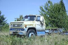 Gaston Chevy (creepingvinesimages) Tags: htt truck rust field dodge gaston washingtoncounty oregon nikon d7000 pse14 inpixio topaz