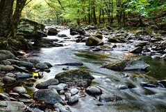Smoky Mountains. (ToddGraves2) Tags: ngc