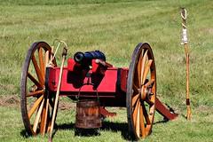 ARTILLERY POWER (MIKECNY) Tags: gun cannon firepower artillery oldstonefortdays americanrevolution schoharie schoharievalley
