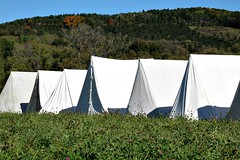 COLONIAL CAMP (MIKECNY) Tags: tent troops camp colonials american schoharie schoharievalley oldstonefortdays americanrevolution