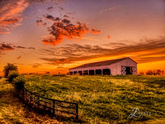 """Sunset over Central Kentucky (JuanJ) Tags: light art lens bokeh lightroom pink red people white black green nature architecture landscape outside happy location naturephotography skyportrait new city building cute beauty square photo amazing flickr shot awesome photograph squareformat supershot instagramapp flowers friends sunset sky favorite flower tree me night interestingness dof picture explore fav favs portrait sun grass clouds barn fence kentucky fineart samsung auroahdr nikonfxshowcase fx """"nikon showcase"""""""