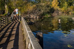 (Seattle Parks & Recreation) Tags: marshisland wetland lakewashington waterwalkway marshlands