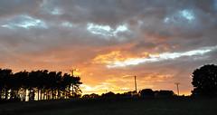 Sunset (DameBoudicca) Tags: sweden sverige schweden suecia suède svezia スウェーデン summer sommar sommer verano été estate 夏 skåne sunset solnedgång sonnenuntergang ocaso coucherdesoleil tramonto 日没