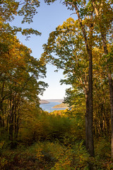 191015-FS-Allegheny-CJW-015 (usfs_Eastern_Region) Tags: outside national naturephoto leaf leaves colors colours tree trees flowers landscape yellow lake orange red autumn fall foliage pennsylvania allegheny forest jakes rocks overlook