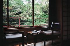 Miyajima, Japan (Quinn Milton Photography) Tags: 35mm 35mmfilm 35mmfilmphotography film filmisnotdead filmphotography analog analogue staybrokeshootfilm believeinfilm istillshootfilm japan miyajima travel