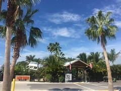 Transforming Port Tampa (st_asaph) Tags: tampabay saltshack tikibar porttampa tampa