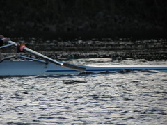 IMG_2676 (NUBCBlueStar) Tags: rowing remo rudern river newcastle nubc university canottaggio men women boat blue october star 2019 tyne canon powershot sweep sculling