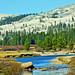 Yosemite High Country, Tuolumne River 10-19