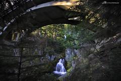 The other Sahalie (Matt Straite Photography) Tags: hood nature waterfall bridge