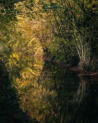 Photo of Autumn in Buckinghamshire