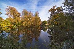 Herbststimmung - 15101901 (Klaus Kehrls) Tags: herbst hamburg landschaft natur seen teich gewässer spiegelung