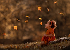 Autumn laughing (agirygula) Tags: autumn red leaves forest fun gold golden noisyforest light portrait sunlight nature girl happy dress natural side 3yearsold leinen