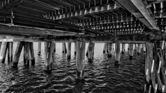 Under the Pier (rainerpetersen657) Tags: sopot poland polska polen water pier wood blackandwhite bw blancoynegro monochrome sony sonyalpha baltic balticsea