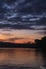 Sunrise (Kusi Seminario) Tags: sunrise amanecer landscape paisaje tambopata madrededios peru perú southamerica sudamerica rainforest selva jungle amazonas amazonia amazon river rio canon eos 7dmarkii clouds nubes cloudy