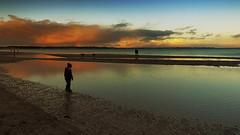 Beach scene in the evening light (Ostseeleuchte) Tags: balticsea ostsee abendlicht abenddämmerung eveninglightonthebalticsea