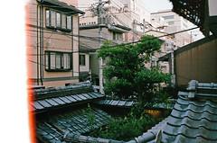Kyoto, Japan (Quinn Milton Photography) Tags: 35mm film analog analogue 35mmfilm filmphotography istillshootfilm filmisnotdead staybrokeshootfilm japan travel kyoto ifyouleave believeinfilm