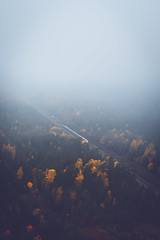 Gray day (calmingechoes) Tags: autumn fall forest fog sweden nature nikon