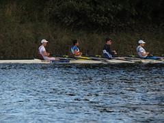 IMG_2696 (NUBCBlueStar) Tags: rowing remo rudern river newcastle nubc university canottaggio men women boat blue october star 2019 tyne canon powershot sweep sculling