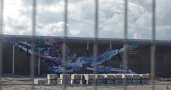 graffiti (Gerard Stolk ( vers le toussaint)) Tags: thehague denhaag lahaye haag graffiti binckhorstlaan