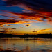 Sunset Ancona Fish Harbour 16/10/2019