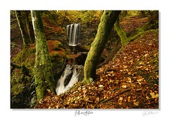 Falls in Autumn.. Dalcairney (JCstudios PHOTOGRAPHY) Tags: waterfalls nature waterfall travel hiking photography naturephotography travelphotography water landscape chasingwaterfalls adventure ig waterfallsofinstagram love wanderlust mountains waterfallsfordays naturelovers summer photooftheday travelgram explore green forest hike falls beautiful waterfallphotography dalmellington dalcairney scottish ayr patna coal mining village