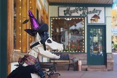 Halloween Decor, Mushroom Monday (LensAdventurer) Tags: sonynex5n manitousprings colorado zeiss jena tessar 5028 halloweendecoration