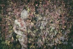 Secret Things (Annieverse) Tags: self selfportrait portrait självporträtt autumn höst woman conceptual conceptphotography solitude kvinna foliage leaves seasons