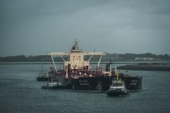 Heavy buddy arrived in the Port of Rotterdam (sharpileville) Tags: merchantnavy maritime seaman seamen boat ship vessel oilindustry oilcarrier tankership rotterdam portofrotterdam